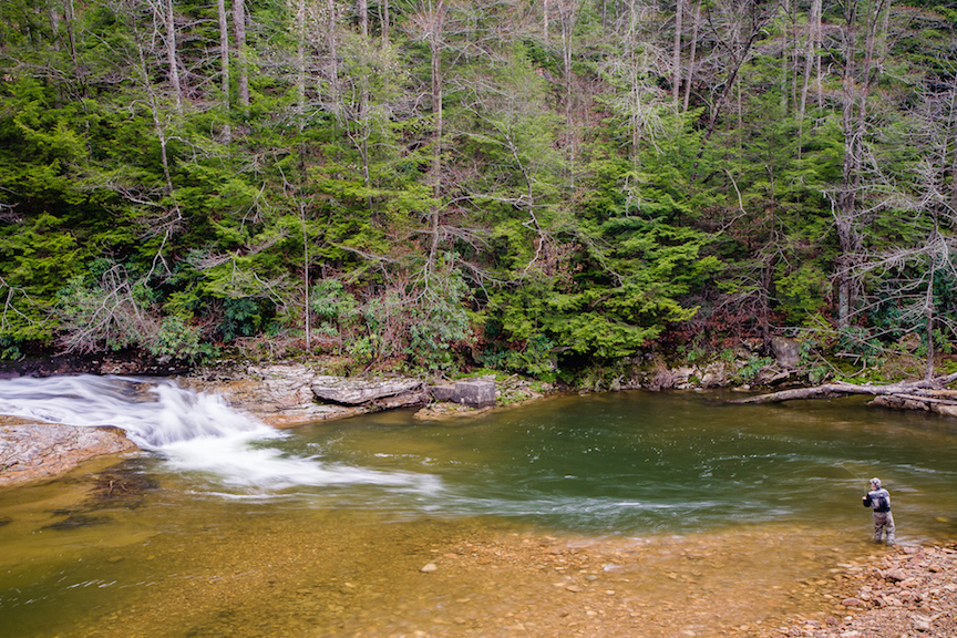 Cherry River, Mongahela National Forest  Photo:  Kent Mason