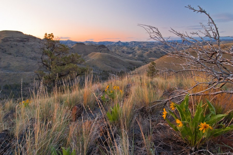 Spring Basin Wilderness, OR  Photo: Jim Davis