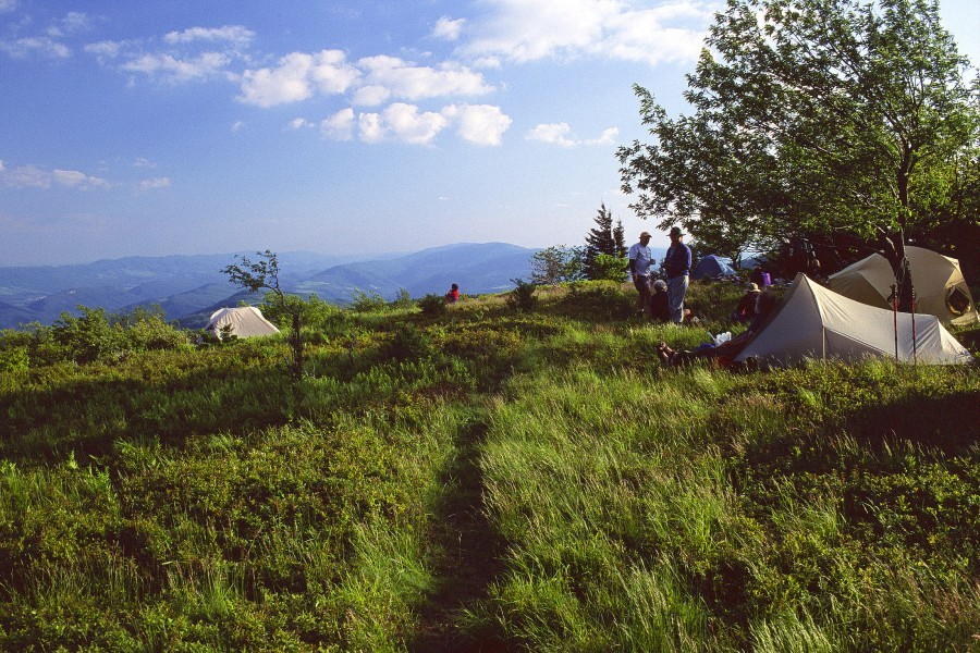Roaring Plains Wilderness, WV  Photo: Jonathan Jessup