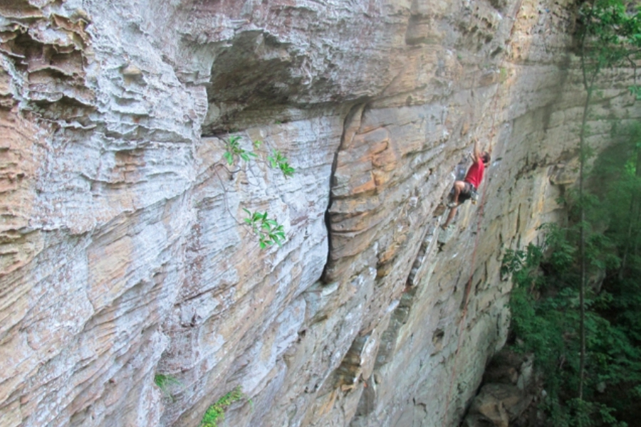 Miller Fork, KY  Photo:  Red River Gorge Climbers Coalition