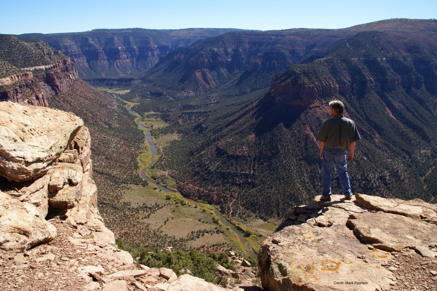 Dolores River Canyon  Photo:  San Juan Citizens Alliance