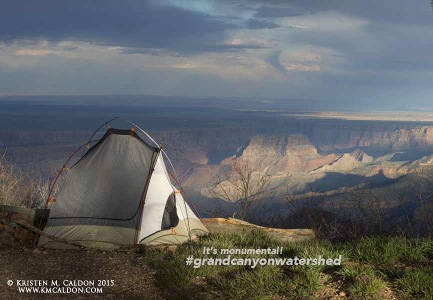 Grand Canyon Wildlands Council_Photo_textKMC_7767_saddlemtn.camp.tent.h.web