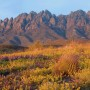 New Mexico Wilderness Alliance_Photo_OrganMountians_Mike Groves